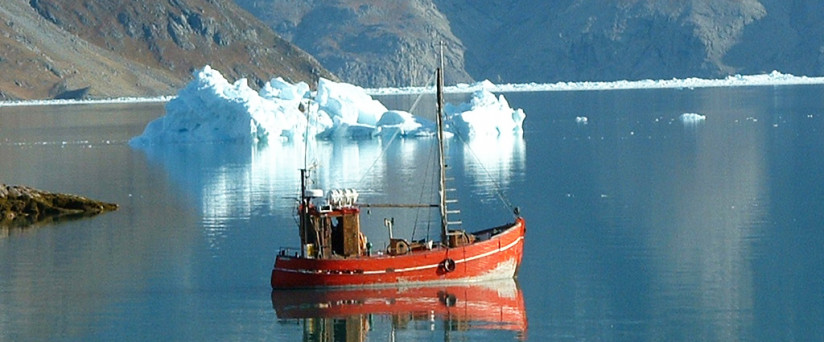 "BLUE ICE EXPLORER ""South Greenland boat trip"""